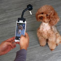 Perche Selfie pour animaux...